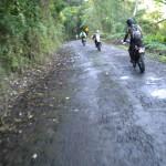 Hakalau gultch road